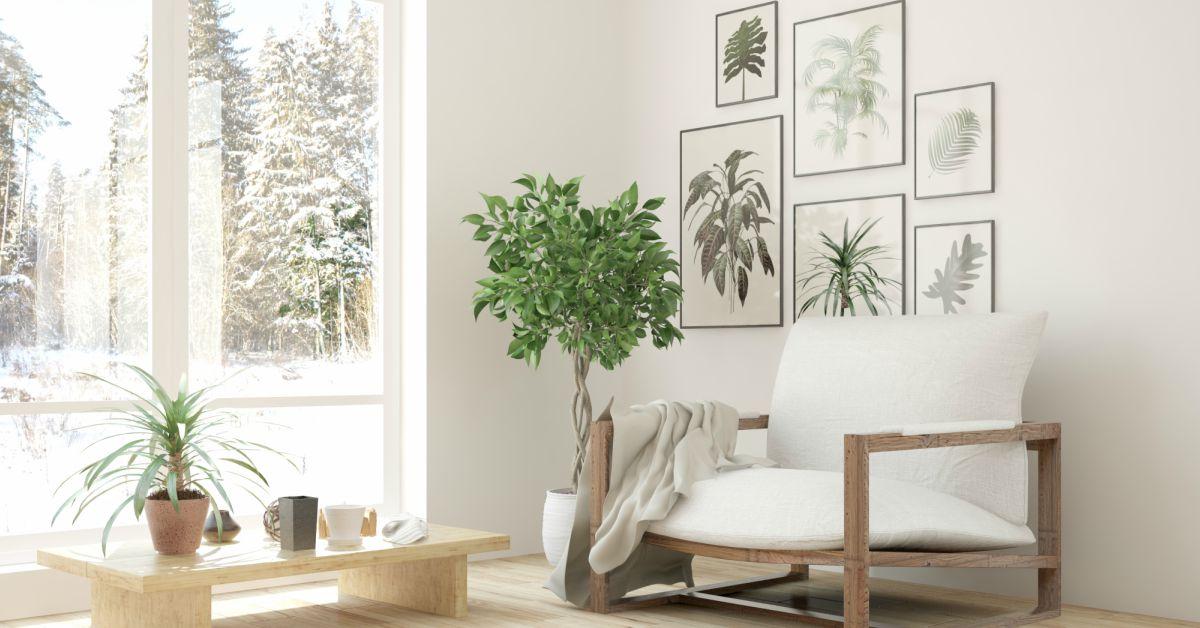 Meer-licht-in-huis-creëren