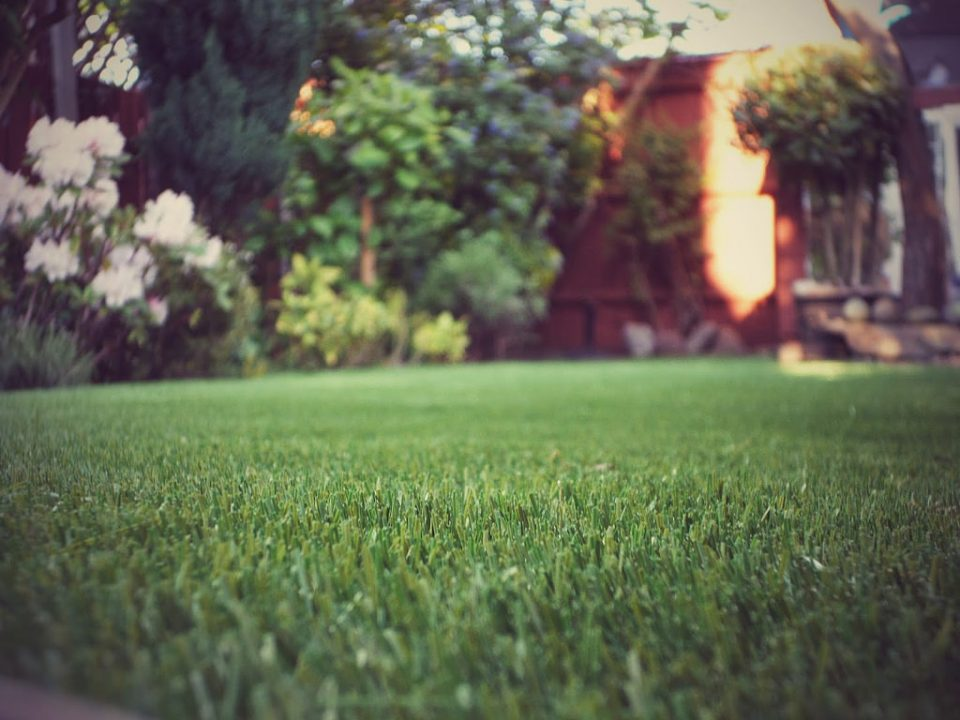 altijd groen kunstgras