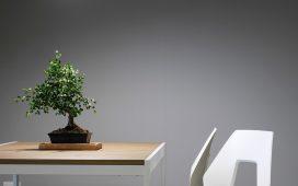design meubels