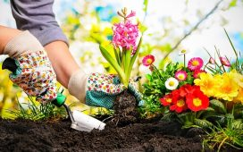 We kunnen weer de tuin in! Zo maak je jouw tuin lenteklaar!.v1