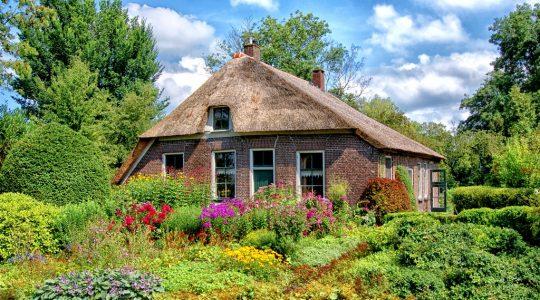Alles wat je nodig hebt voor de tuin