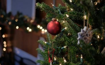 Alle kerstverlichting tips op een rijtje