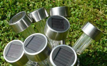 Maak je tuin duurzamer met deze drie tips