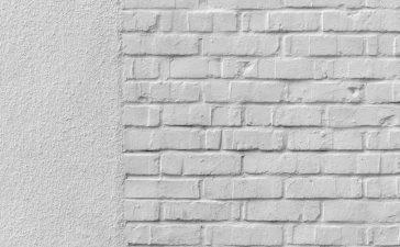 Het belang van schimmel en vocht verwijderen in huis
